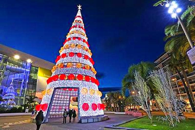 cannes christmas tree